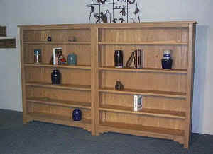 New Mexico Bookcases